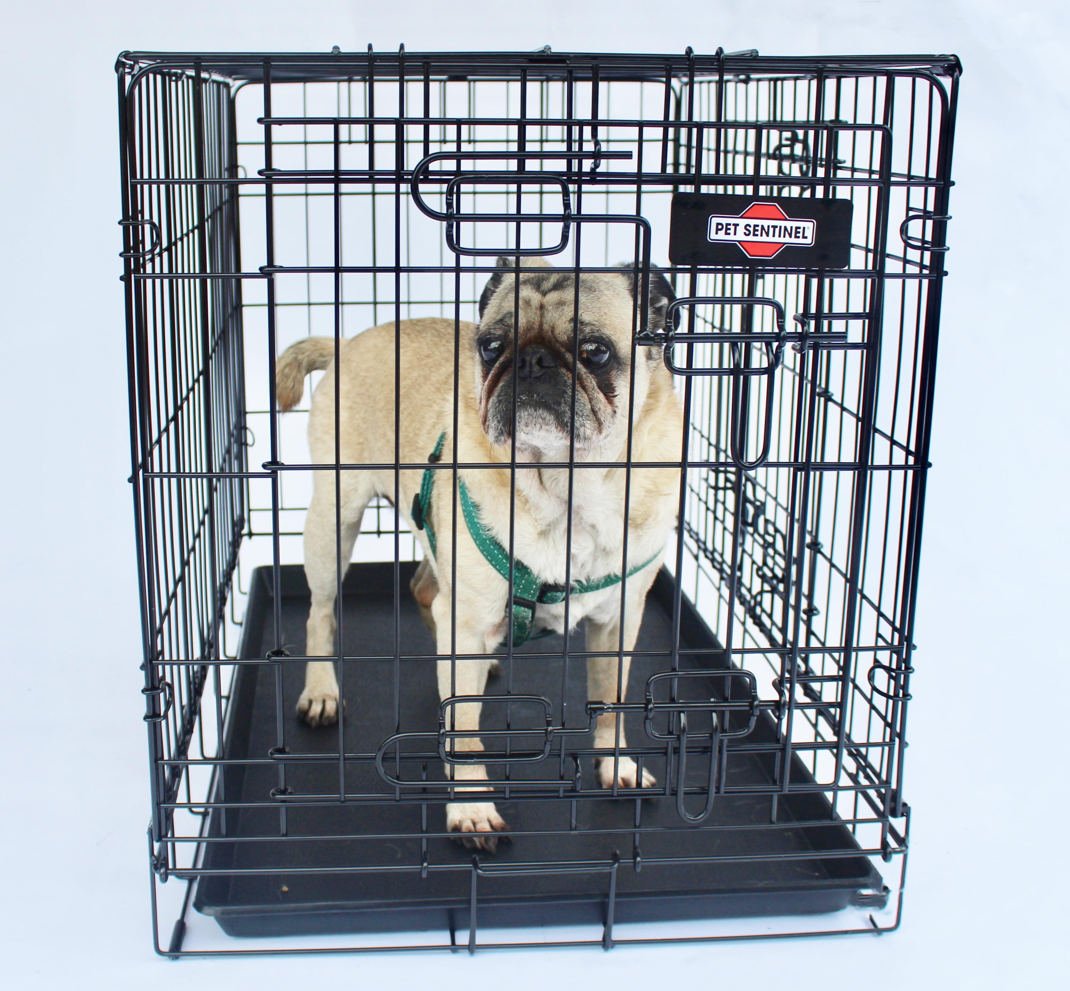 Medium Dog Crate 21in H x 19in W x 30in L