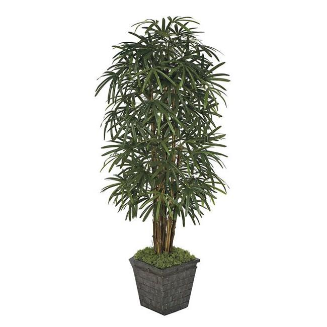 Autograph Foliages W-60260 - 7 Foot Lady Palm Tree - Green