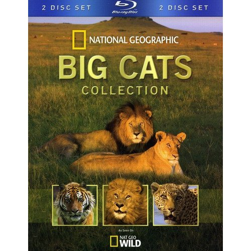 National Geographic: Big Cats Collection (Blu-ray) (Widescreen)