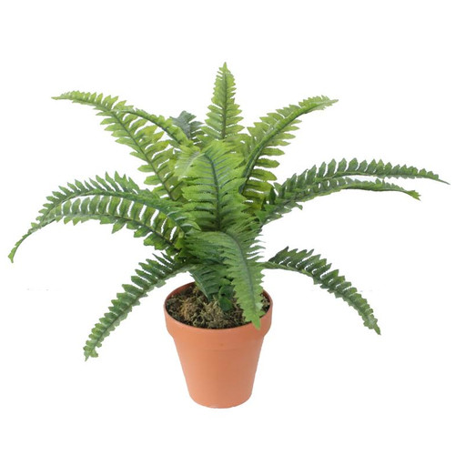 "19"" Potted Artificial Green Boston Fern Plant Spring Decoration"