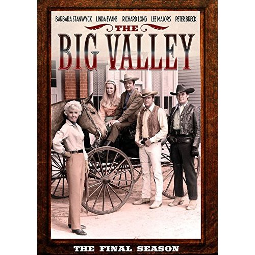 The Big Valley: The Final Season (Full Frame)