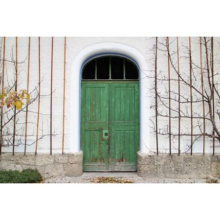 LAMINATED POSTER Round Arch Hinged Door Wood Input Door Double Door Poster Print 24 x 36