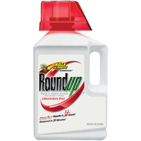 Roundup Weed Amp Grass Killer Concentrate Plus 0 5 Gal