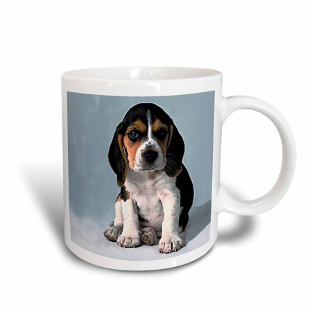 3dRose Beagle Pup, Ceramic Mug, 11-ounce