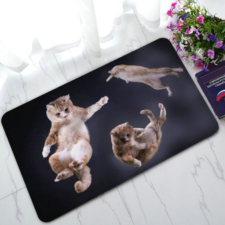 PHFZK Three Cats Jumping in Space Doormat Outdoors/Indoor Doormat Home Floor Mats Rugs Size 30x18 (Space Matt)
