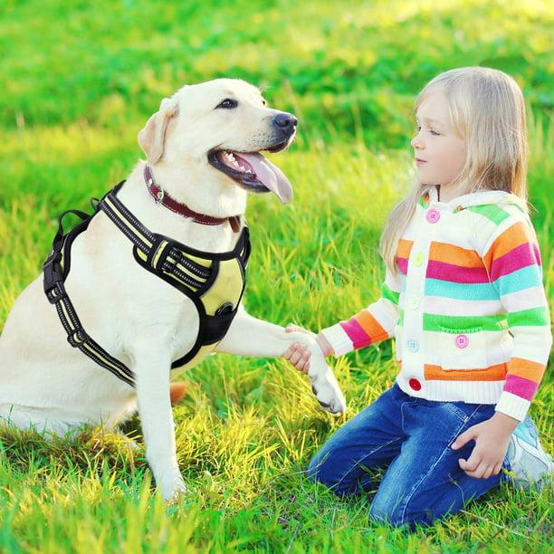 Rabbitgoo Dog Harness No-Pull Adjustable Safe Comfort Pet Vest