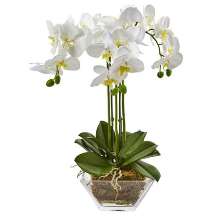 - Nearly Natural Triple Phalaenopsis Orchid Floral Arrangements in Decorative Vase
