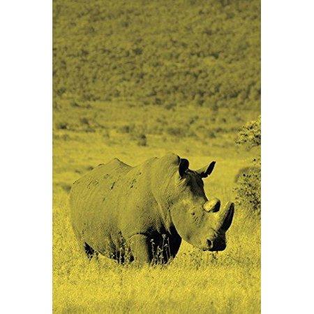 Alive! White Rhino - Yellow Duotone - Photo Art Notebooks (6 X 9 Version) - image 1 of 1