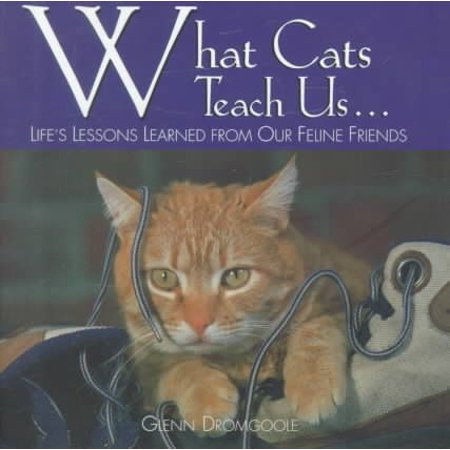 What Cats Teach Us : Life's Lessons Learned from Our Feline