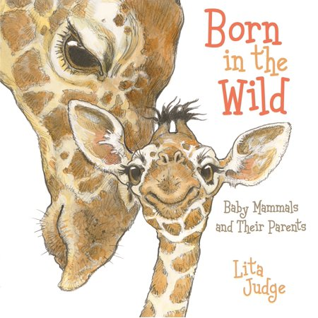 Born in the Wild : Baby Animals and Their Parents (Animals And Their Young Ones In Hindi)