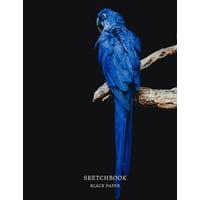 Sketchbook Black Paper: Black Paper Premium Blue Parrot/Bird Cover Sketchbook, for doodling, sketching, typography, drawing, 8.5x11 Extra Large, 120 pages (Paperback)