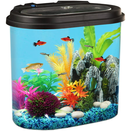 Hawkeye 4 5 Gal Stadium View Aquarium Kit With Led Light And Power Filter