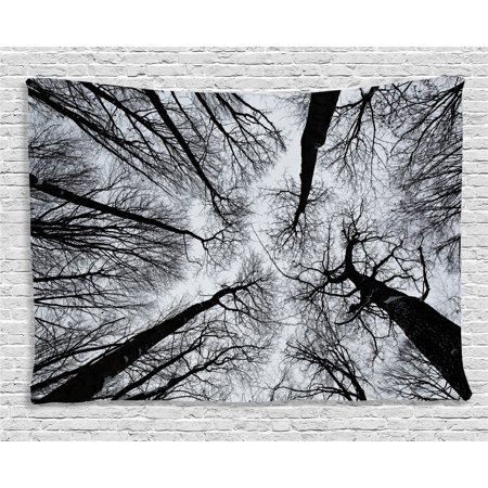 Forest Home Decor Tapestry, Scary Winter Tops of the Trees Dark Dramatic Silhouettes Enchanted Image, Wall Hanging for Bedroom Living Room Dorm Decor, 60W X 40L Inches, Black Grey, by Ambesonne