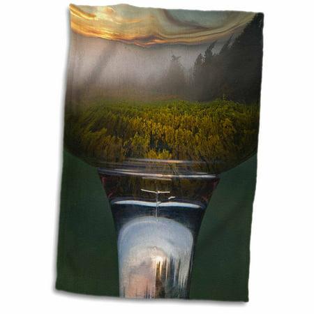 3dRose Wine glass, Vineyard in Riedel Oregon Pinot Noir - US38 JMI1032 - Janis Miglavs - Towel, 15 by 22-inch