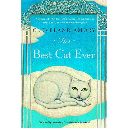 The Best Cat Ever (Best Cat Names Ever)