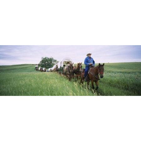 Historical reenactment of covered wagons in a field North Dakota USA Canvas Art - Panoramic Images (18 x 7)