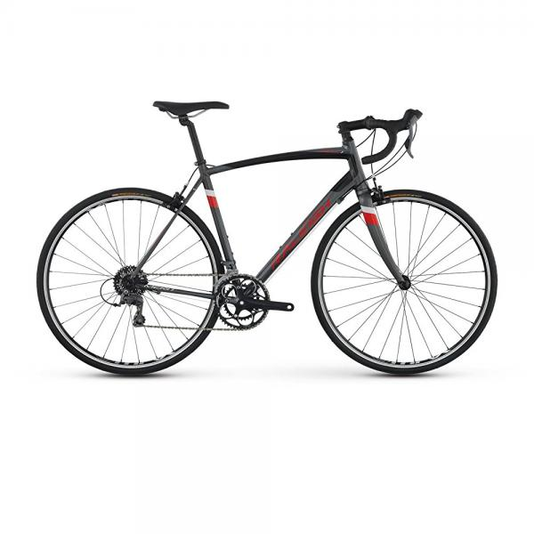 raleigh bikes merit 1 endurance road bike, silver, 58cm/x-large