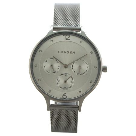 SKW2312 Anita Stainless Steel Mesh Bracelet Watch by Skagen for Women - 1 Pc (Skagen Ladies Mesh)