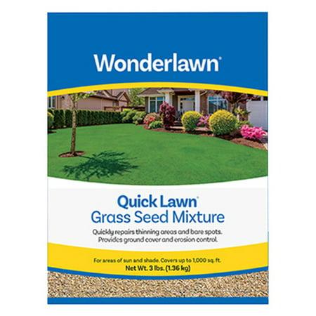 BARENBRUG USA Quick Lawn Grass Seed, 3-Lbs.