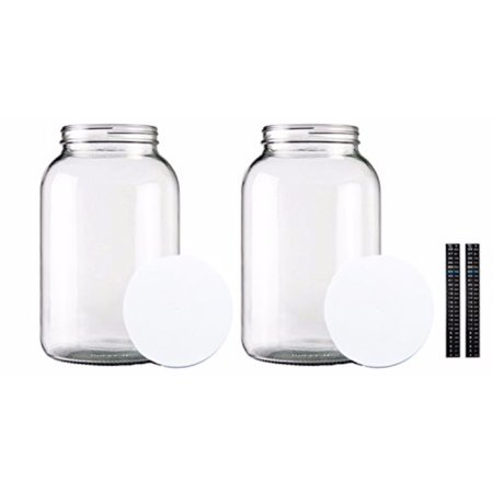 One Gallon Glass Jar with Lid and Dual Scale Thermometer-Set of 2