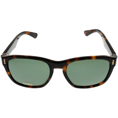 b28a529868c Cartier - Cartier Premiere Sunglasses Wayfafer Mens Havana Polarized  T8200943 56 Size  Lens  Bridge  Temple  56-18-142 - Walmart.com