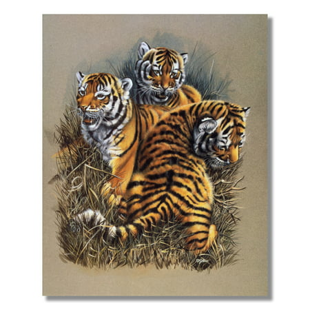 Aft Cat (African Tiger Cat Cubs Kids Wall Picture Art Print )