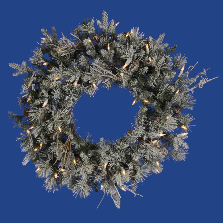 """24"""" Pre-Lit Frosted Wistler Fir Artificial Christmas Wreath - Clear Dura Lights"""