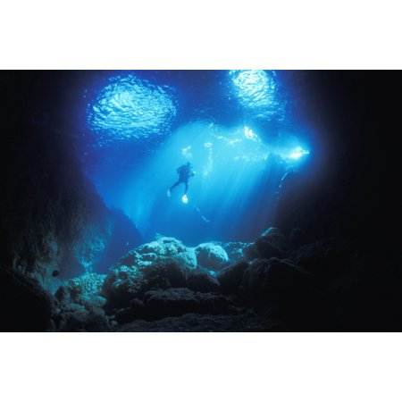 Blue Vertical Arch - A diver hovers inside the archway as late afternoon sun streams in Blue Maomao Arch Poor Knights Islands New Zealand Stretched Canvas - Alex Misiewicz  Design Pics (19 x 12)