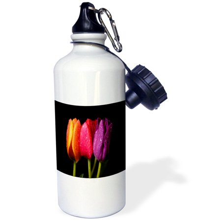 3dRose Orange Red n Purple Dew Covered Tulips, Sports Water Bottle, (Dew Drops Bottle)