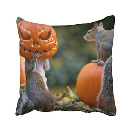 WinHome Happy Halloween Funny Pumpkin Cute Squirrels Decorative Pillowcases With Hidden Zipper Decor Cushion Covers Two Sides 18x18 inches (Funny Pumpkin Ideas For Halloween)