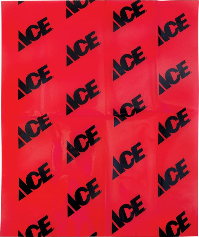 Inteplast Ace Tailgate Flag 16 In. X 18 In. by Inteplast Group Ltd