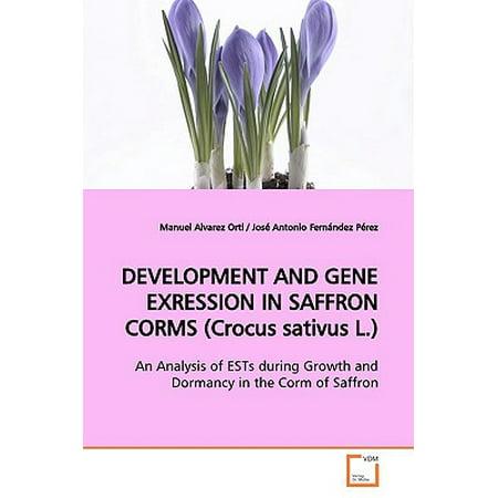 Development and Gene Exression in Saffron Corms (Crocus Sativus L.)