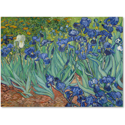 "Trademark Fine Art ""Irises 1889"" Canvas Wall Art by Vincent van Gogh"
