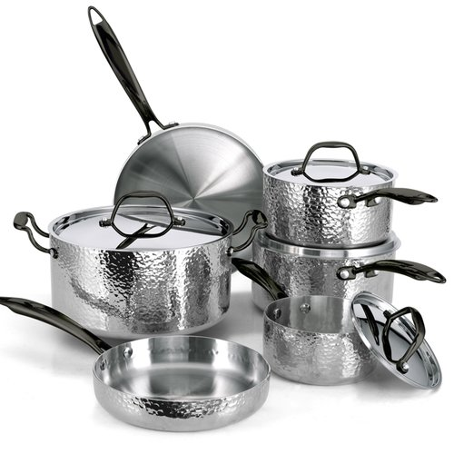 Fleischer and Wolf Seville 10 Piece Stainless Steel Cookware Set by
