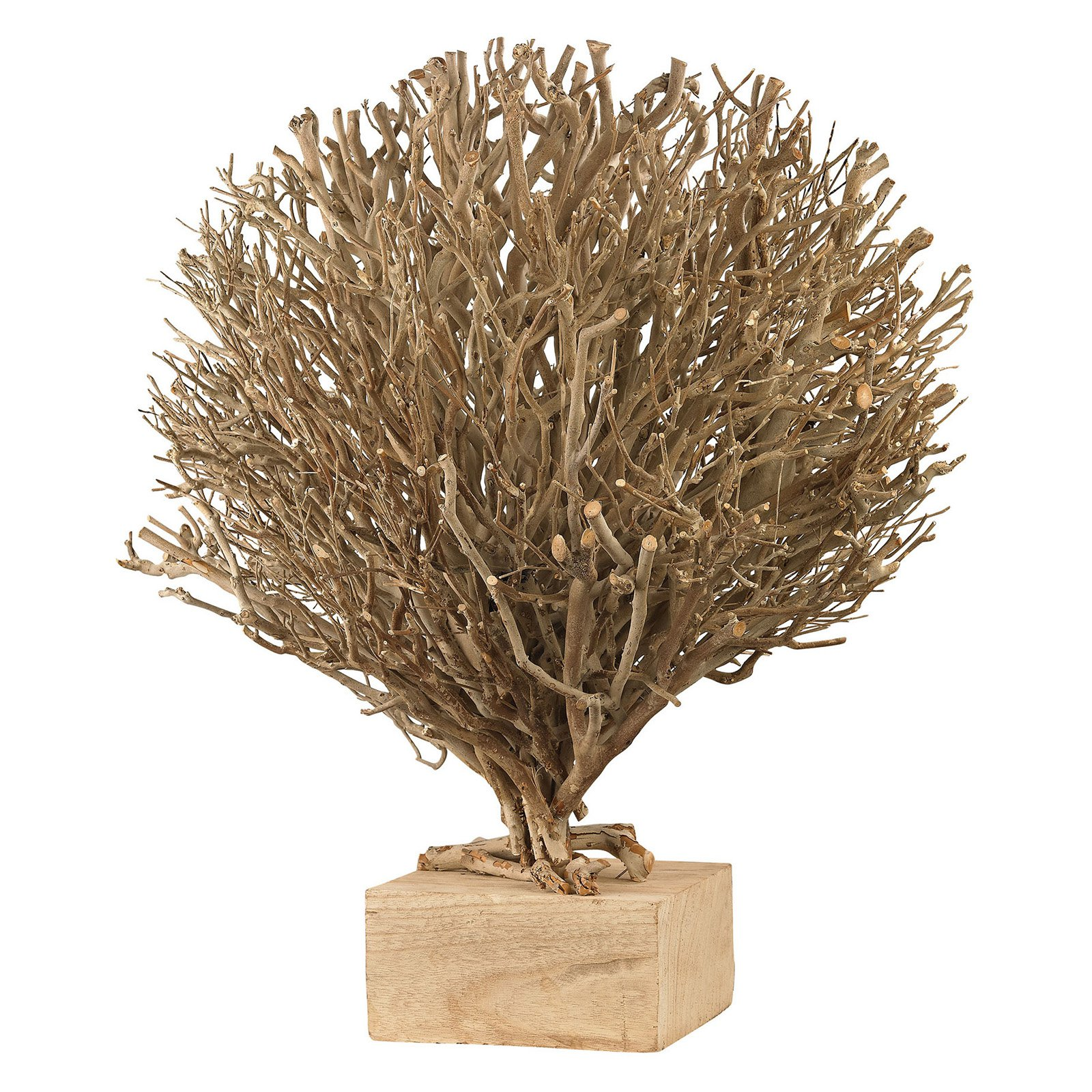 Dimond Home Whitebriar Wood Sculpture