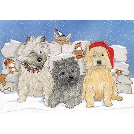 Pipsqueak Productions C933 Holiday Boxed Cards- Cairn Terrier