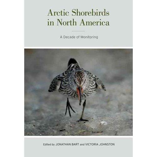 Arctic Shorebirds in North America: A Decade of Monitoring