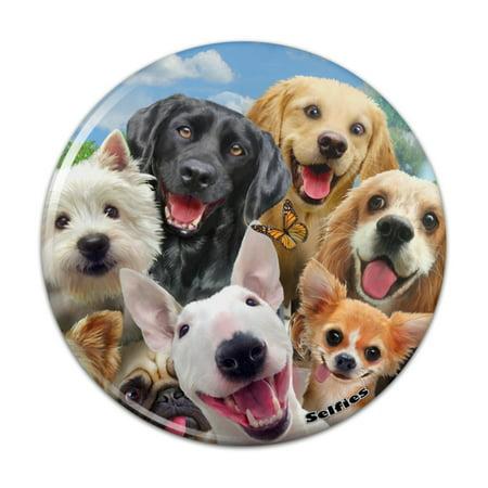 Pug Mini Button - Dogs Selfie Lab Golden Retriever Dachshund Westie Pug Terrier Pinback Button Pin Badge - 2.25