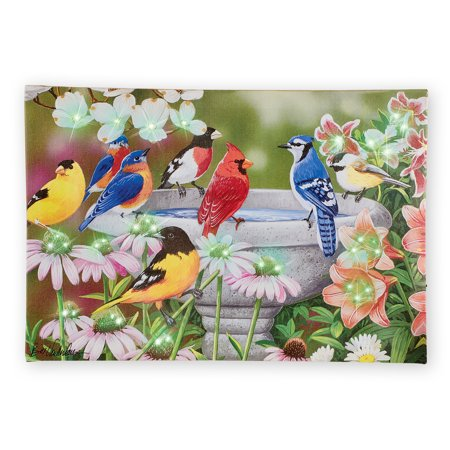 Birds in a Garden Birdbath Lighted Wall Canvas Art - 48 Color-changing Fiber-optic Lights - On/Off Switch on Side - Hook on Back for Easy Hanging - 17