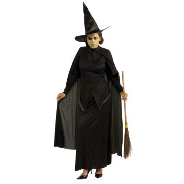 Wicked Witch Adult Halloween Costume](Halloween Wicked Witch)