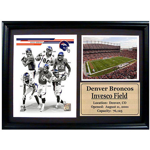 NFL Denver Broncos Photo Stat Frame, 12x18