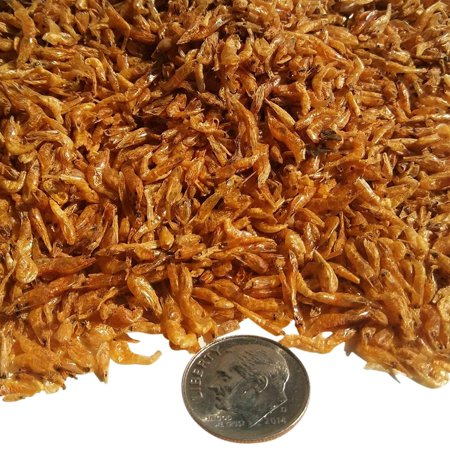 Aquatic Foods Freeze Dried Red Shrimp 1/8