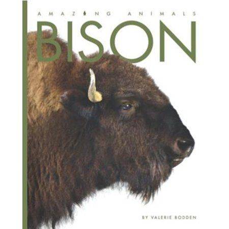 Amazing Animals: Bison (Bison Animals)