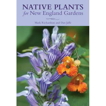Native Plants for New England Gardens -