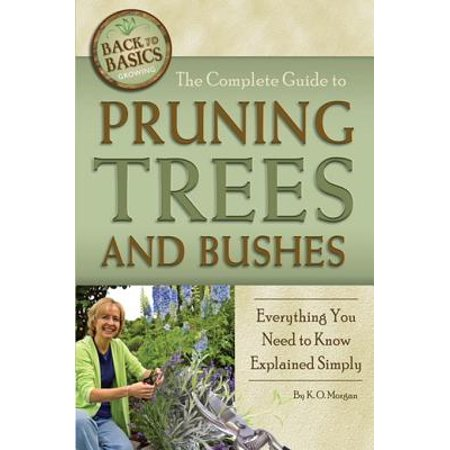 The Complete Guide to Pruning Trees and Bushes: Everything You Need to Know Explained Simply -