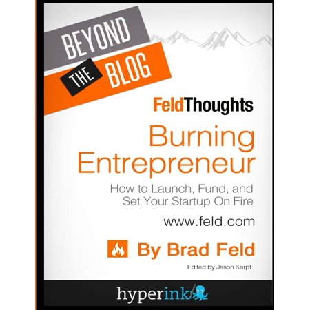Beyond The Blog  Brad Felds Burning Entrepreneur  How To Launch  Fund  And Set  Paperback