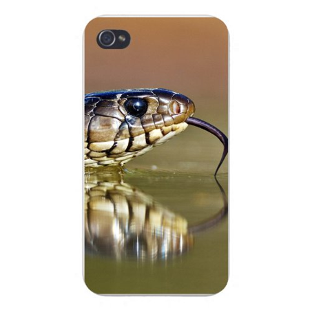 Plastic Snake (Apple Iphone Custom Case 4 4s Plastic Snap on - Snake Head w/ Split Tongue Slithering)