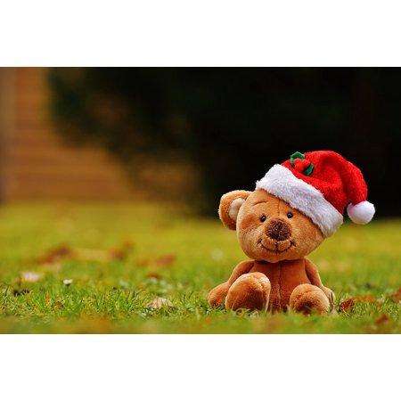 LAMINATED POSTER Funny Christmas Santa Hat Teddy Soft Toy Poster Print 24 x - Funny Christmas Hat