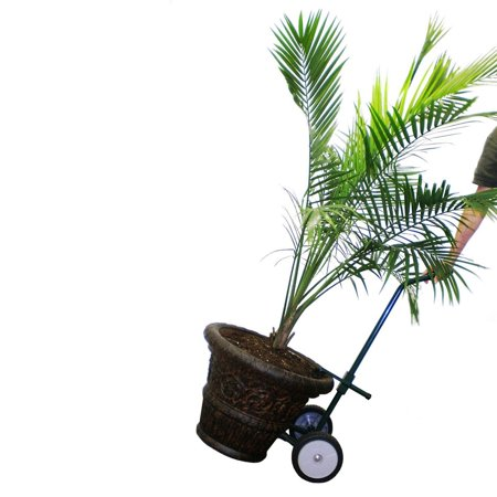 Harper Trucks Steel Potted Plant And Pot Mover With 8 Flat Free Wheels