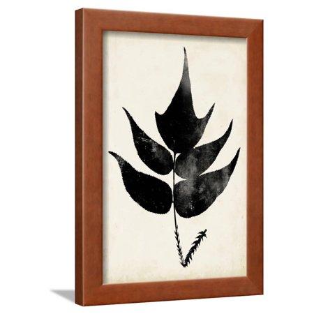 Fern Silhouette IV Framed Print Wall Art By Vision Studio